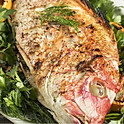 Creole Whole fresh caught Snapper