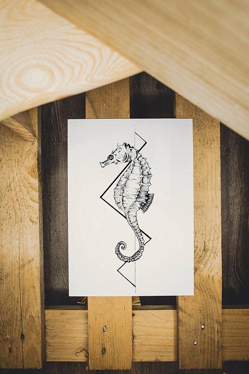 Plakát Mořský koník