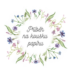 logo v png.png