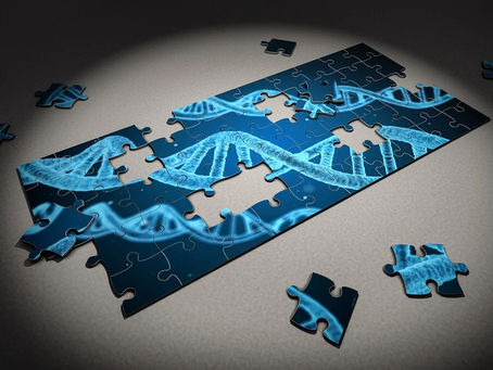 Will DNA alteration be in our future or will ethics come in the way?