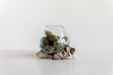 Melting Glass Vase Over Natural Wood