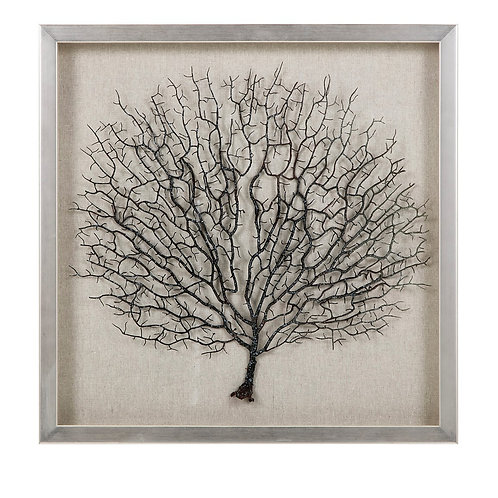 Coral in Shadowbox with Frame