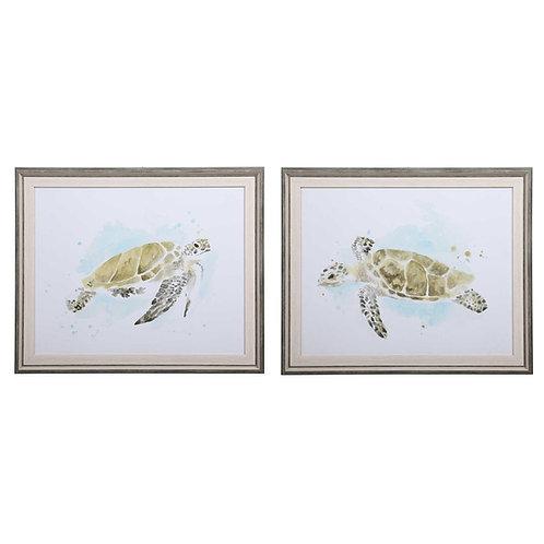 Set 2/Harbor Sea Turtle Artwork
