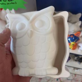Wise Owl Box