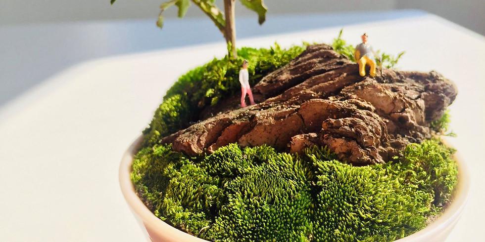 イケメン庭師に学ぶ 小さなマン盆栽ワークショップ