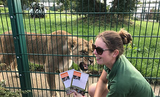 Folly Farm Luna Leaflets 2.jpg
