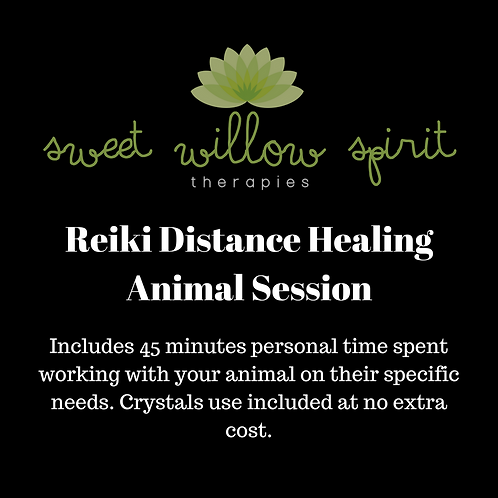 Distance Reiki Session - Animal