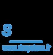 RB SYSTEM logo carré.png