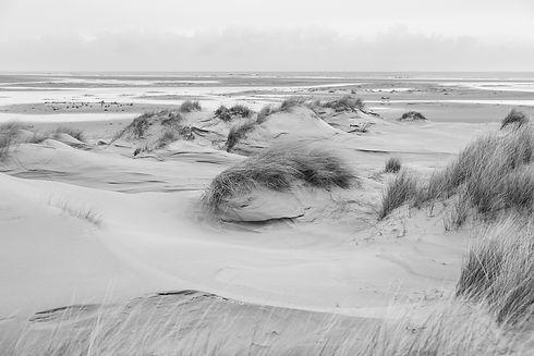 duinen 3 klein.jpg
