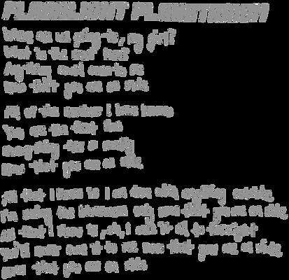 Flashlight Planetarium Lyrics