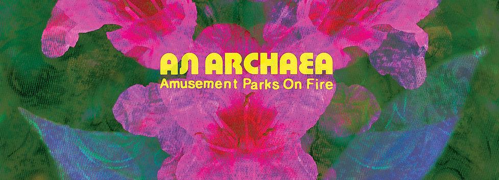 An Archaea CD