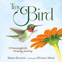 Tiny Bird cover