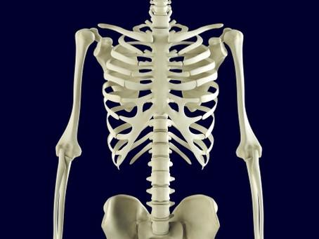 骨と筋肉Q&A②骨粗しょう症