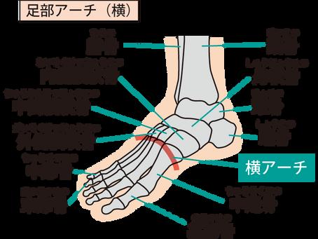 足の健康と靴の関係①外反母趾を正しく知る
