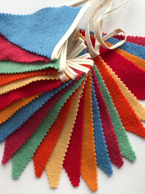 Carnival Coloured Bunting