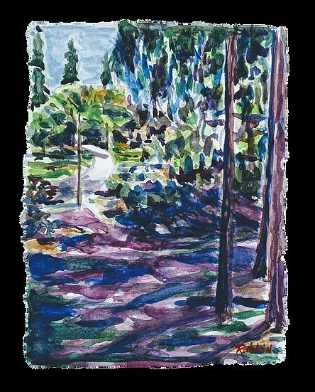 """Carmel Valley- Spring Bloom""  Watercolor 12"" x 16"""