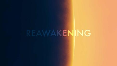 REAWAKENINGback.jpg