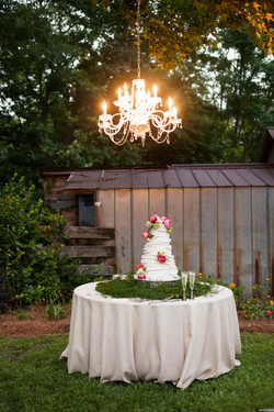 Graves_Terry_Reese_Moore_Weddings_RTM3648