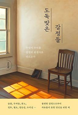 도둑맞은 감정들_평면.jpg