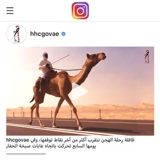 ANNA AIKO - HHC CAMEL TREK