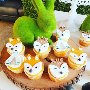 Wildone  Cupcakes