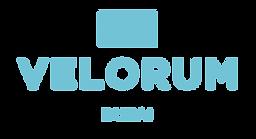 Velorum_Logo_Aqua.png