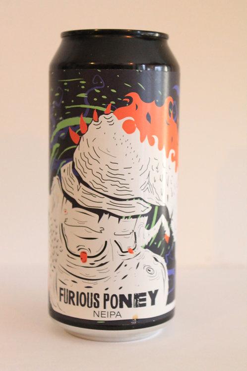 Furious Poney