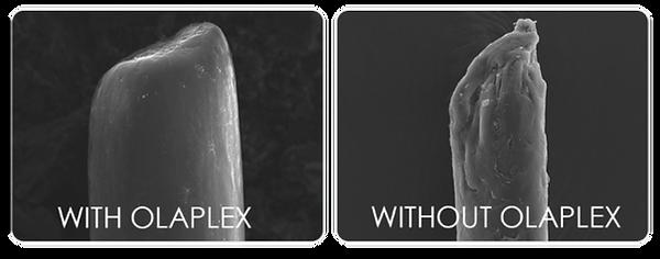 Oleplex Hair Repair.png
