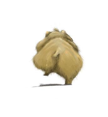 Hamster Bum Wall Print