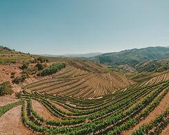 wide-shot-field-douro-valley-portugal-su