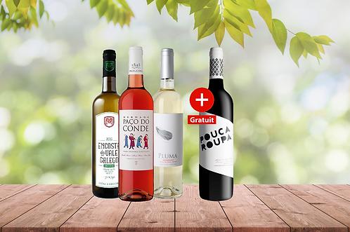 Nos vins de printemps 3+1 (4)