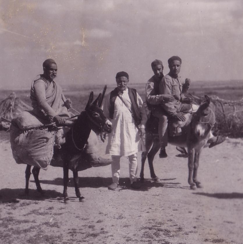 Egypt 72