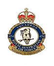 454 Badge icon.jpg