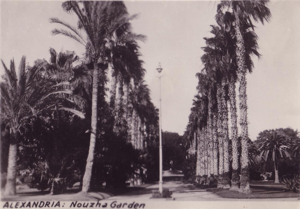 Egypt Alexandria Nozha Garden