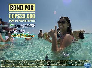 Promo-Bono.jpg