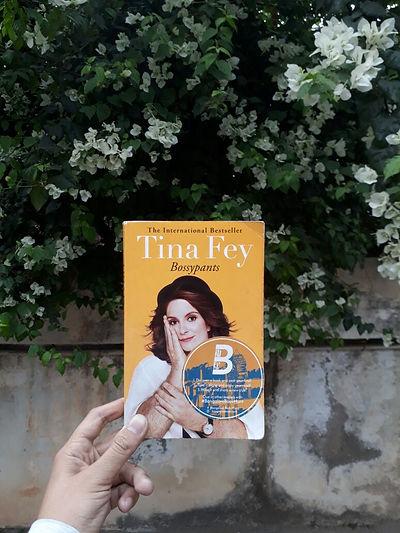 Tina Fey 2.jpeg