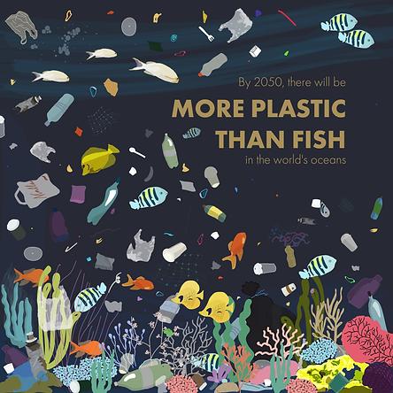 More plastic tha fish