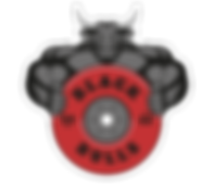 BLACKBULLS_LOGO(sfondo_trasparente)_edit