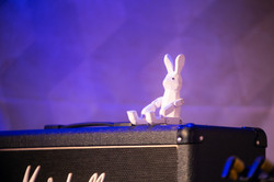 rabbit youth riot