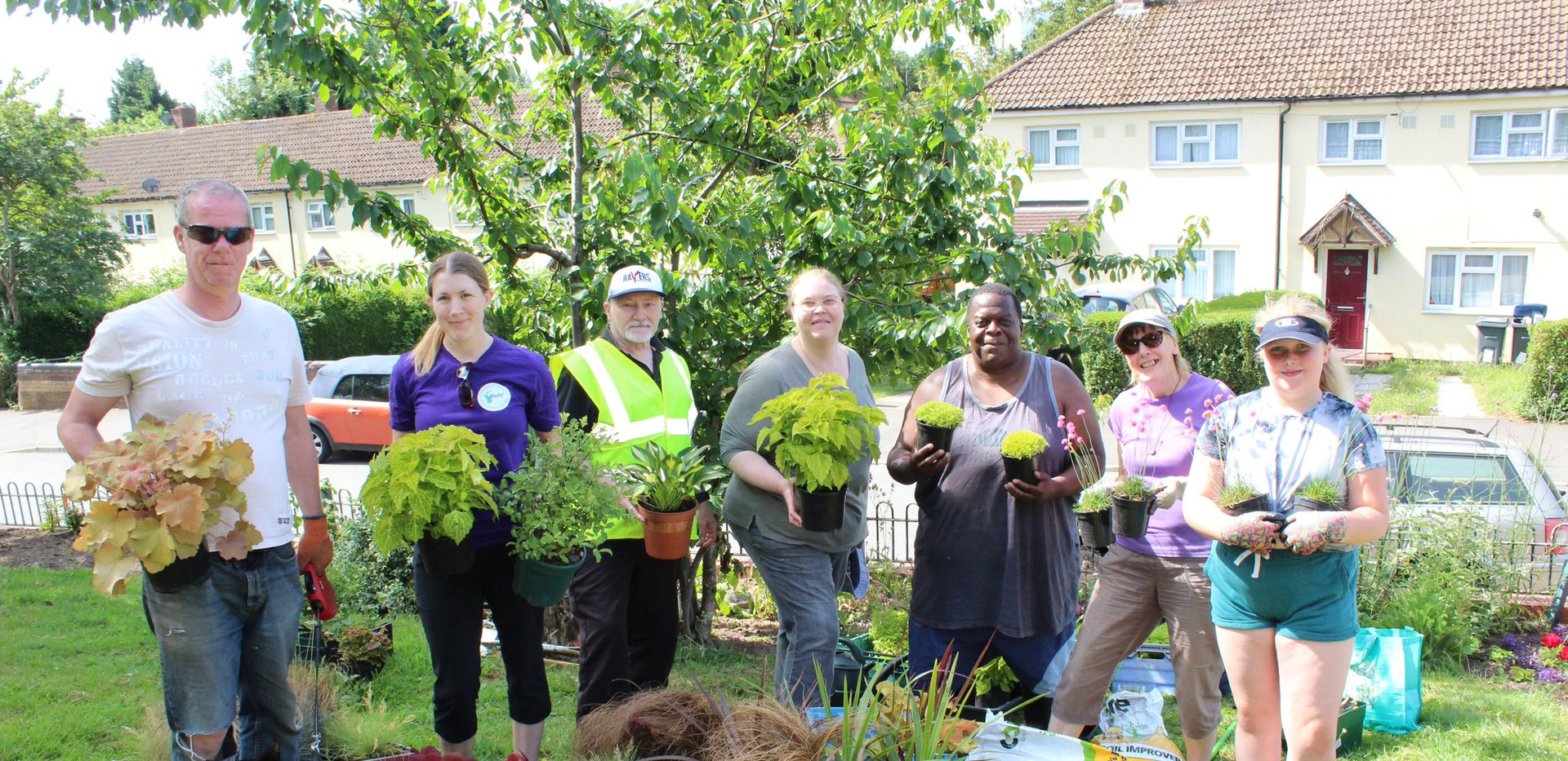 WHF Green Grafters (Pic Courtesy of GardenStore)