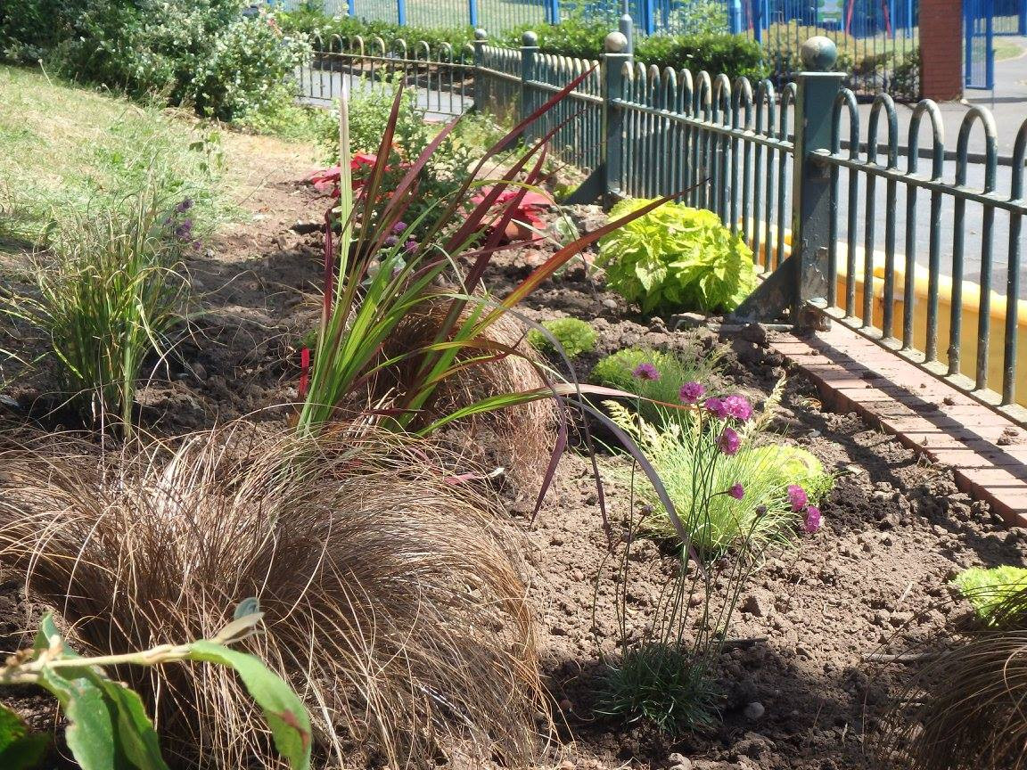 GWLive plants in the community