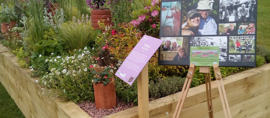 'Belong' - Flower Shows and Community Gardening