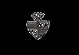 BOY Logo.png