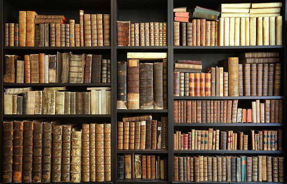 old books on wooden shelf.jpg