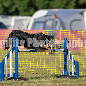 Valley Farm - Ring 5 Class 1 Large Jumping GD 1-3