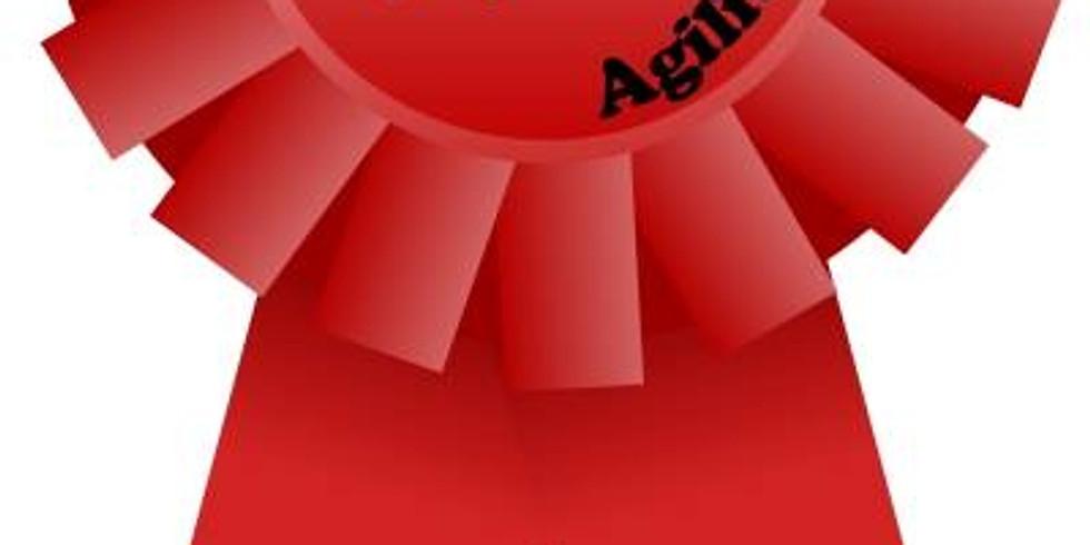 Red Run Agility Show