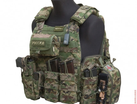How Should I Set Up My Plate Carrier?