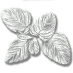 consumable_herb_american_ginseng.png