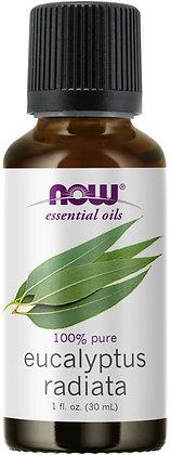 100% Pure & Natural Eucalyptus Radiata Oil
