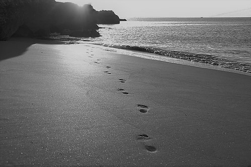 First Steps Phase 1 Package (B&W)